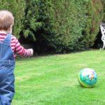 Ketahui 5 Jenis Mainan Edukasi untuk Anak 2 Tahun dan Manfaatnya